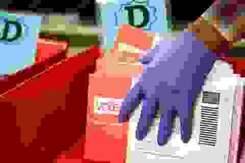 Nhà Trắng: Bầu cử Tổng thống Mỹ sẽ diễn ra đúng kế hoạch