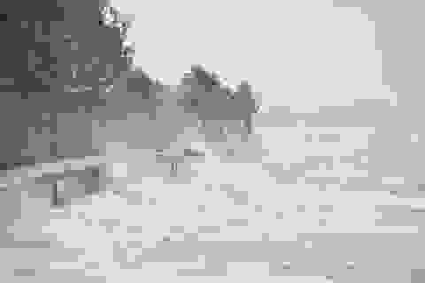 Mưa lũ do bão làm 2 người chết, hơn 1.700 ha lúa và hoa màu bị ngập