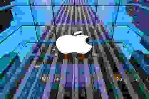 "Apple bất ngờ ""thay tướng"" Phil Schiller"
