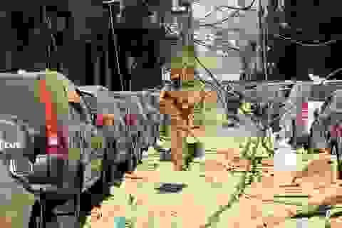 Li Băng trao quyền kiểm soát an ninh thủ đô cho quân đội sau vụ nổ