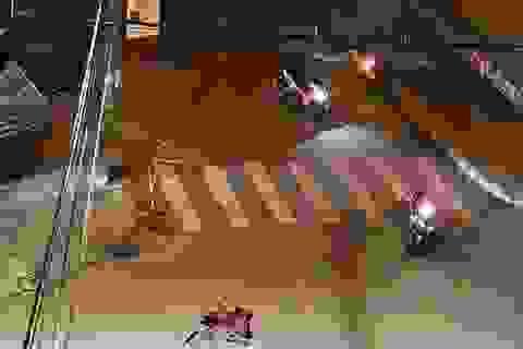 Bắt đối tượng truy nã đặc biệt nguy hiểm trong vụ giết người ở Quy Nhơn