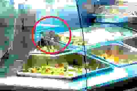 Vụ chuột bò lên khay thức ăn: Aeon nhận trách nhiệm, không đổ cho nhân viên