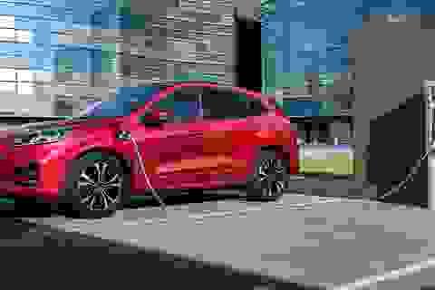 Liên tục xảy ra cháy xe, Ford dừng bán và triệu hồi một mẫu hybrid sạc điện