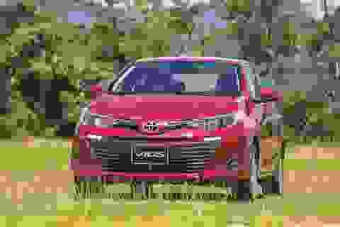 """""""Cánh én nhỏ"""" Vios và """"mùa xuân"""" tháng 7 của Toyota"""