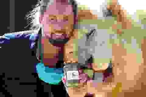 Khủng hoảng vì dịch Covid-19, rạp xiếc bán phân sư tử