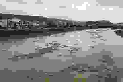 Lũ lớn bất thường xuất hiện trên sông Hồng, sông Chảy