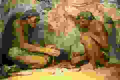 """Từ 200.000 năm trước, loài người đã ngủ trên những """"chiếc giường"""" êm ái"""