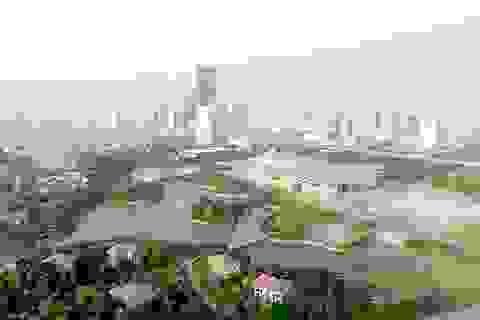 GS. TSKH Đặng Hùng Võ: Quy hoạch, xây dựng phải gắn với môi trường sống