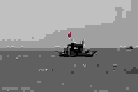 Cứu vớt kịp thời 5 ngư dân bị chìm tàu trên biển