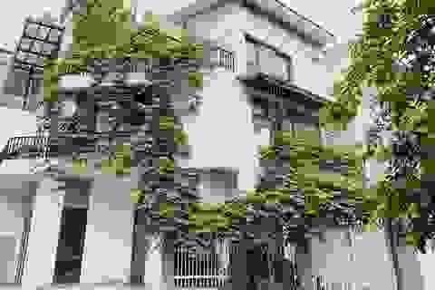 Biệt thự đẹp như trời Âu, bên trong toàn gỗ cao cấp của gia đình ở Hà Nội
