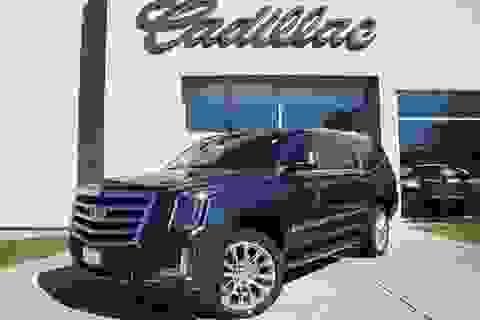 """Thương hiệu Cadillac đã để mất """"miếng ngon"""" như thế nào?"""