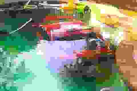Say xỉn, tài xế lái xe ô tô lao xuống bể bơi