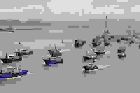 Tàu cá Trung Quốc ồ ạt tràn xuống Biển Đông sau thời hạn cấm đánh bắt