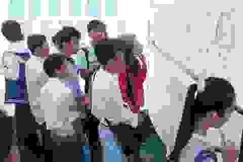 Cà Mau đề xuất ưu tiên đào tạo nghề cho lao động nông thôn diện chính sách