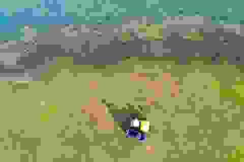 Đẹp đến nao lòng hồ nước nhân tạo lớn nhất Việt Nam