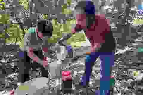 Phú Yên: Thu gần 200 triệu đồng/năm từ bí quyết ...ủ phân cá gốc cây
