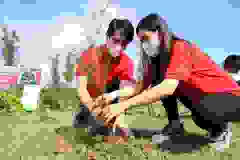 Cộng đồng chung tay tạo màn chắn xanh cho Việt Nam
