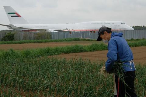 Từ chối 40 tỉ đồng đền bù, quyết giữ đất trồng rau... giữa sân bay đông đúc
