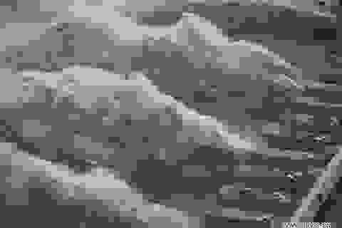 Đập Tam Hiệp gánh lưu lượng nước lũ cao kỷ lục