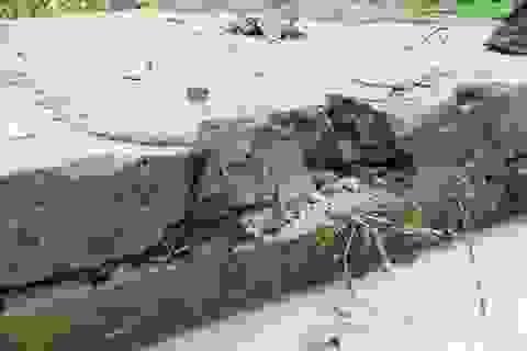 Dự án trăm tỷ vừa xong đã hỏng: Phát hiện đắp bùn nhão để trám bê tông