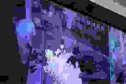 Hà Nội: Điều tra vụ tiệm vàng trình báo bị trộm 350 cây vàng