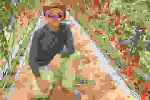 Chàng kiến trúc sư trẻ kể chuyện làm nông ở Israel