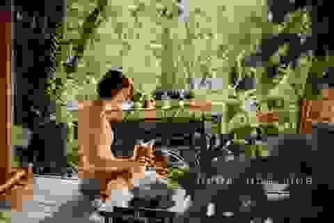 Cuộc sống bình yên trong căn nhà hoa giấy đậm chất thơ ở Huế