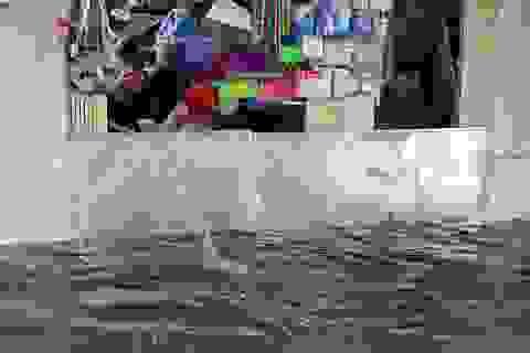 Phố ngập thành sông, người dân Hà Nội hì hục tát nước