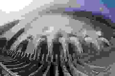 Mực nước đập Tam Hiệp dâng cao kỷ lục