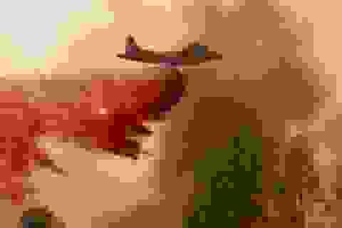 """Cháy rừng đẩy bang California vào cảnh """"ngàn cân treo sợi tóc"""""""