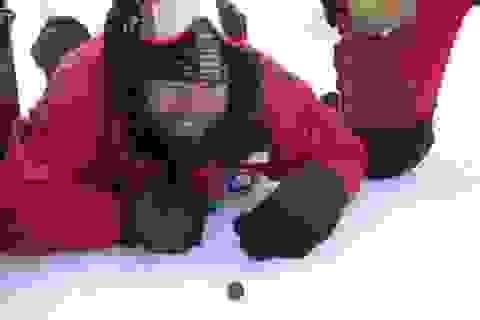 Phát hiện thiên thạch ở Nam Cực có thể chứa bí ẩn về tiến hóa của sự sống