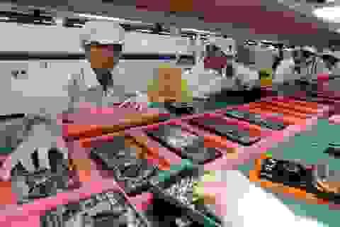 Apple cân nhắc di dời dây chuyền sản xuất iPhone ra khỏi Trung Quốc