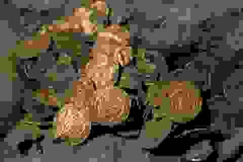 Vô tình đào được kho báu hơn 400 đồng tiền vàng từ 1.100 năm trước