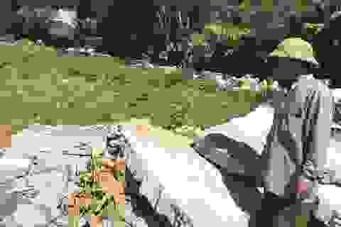 Nghệ An: Nghĩa trang gia đình bị tháo dỡ, dân làm đơn tố lãnh đạo xã