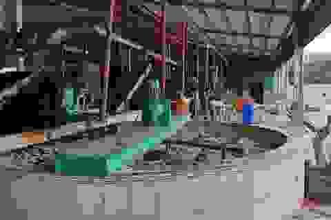 Phú Yên: Yêu cầu kiểm tra nhà máy cao su gây ô nhiễm khiến dân phải bỏ nhà