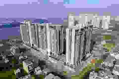 Nhà đất thành phố phía Đông biến động giá như thế nào trong vài năm qua?