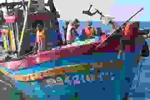 Tạm giữ 2 tàu giã cào hoạt động trái phép trên biển
