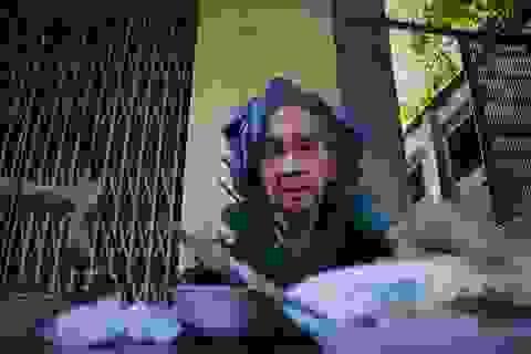 Cụ bà 84 tuổi dành nửa thế kỷ bán cháo đậu đỏ mưu sinh