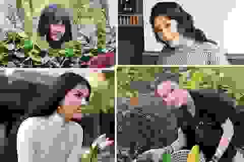 Điểm danh sao nữ Việt chọn ăn chay trường