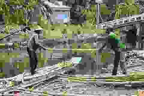Rà soát hộ nghèo, cận nghèo tại Bạc Liêu và Cà Mau