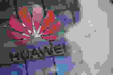 Ming-Chi Kuo dự đoán viễn cảnh xấu nhất cho Huawei trong mảng di động