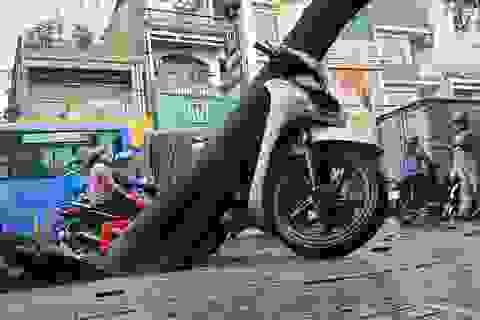 TPHCM: Cây me đổ đè xe SH trong cơn mưa, nhiều người hốt hoảng