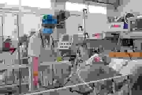 Nhiều thách thức trong điều trị bệnh nhân ngộ độc pate Minh Chay