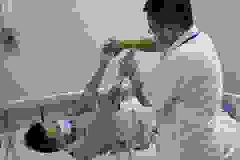 Hà Nội: Nam thanh niên sốc co giật sau liên hoan tiết canh