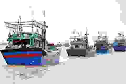 Hiệp định hợp tác nghề cá Vịnh Bắc Bộ giữa Việt Nam-Trung Quốc hết hiệu lực