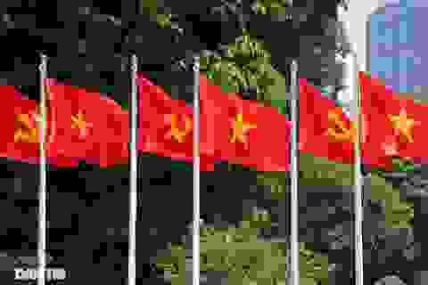 Hà Nội: Cờ Tổ quốc đỏ rực khắp phố phường mừng ngày Quốc Khánh