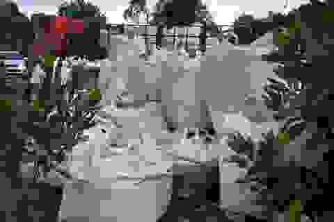 Vụ đổ trộm hàng chục tấn chất thải lạ: Không phải chất độc hại?