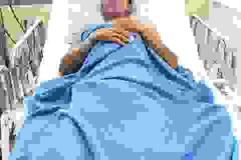 Bệnh nhân bị rắn hổ chúa cắn tạm qua cơn nguy kịch