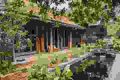 Chán biệt thự nhà phố, nhà giàu Việt về quê làm nhà mái rạ giản dị mà đẹp