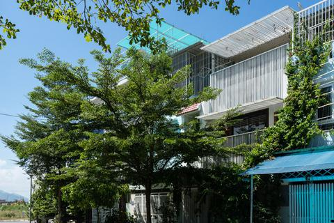 Vợ chồng ở Nha Trang trồng cây dây leo che nắng đẹp tuyệt cho nhà hướng Tây